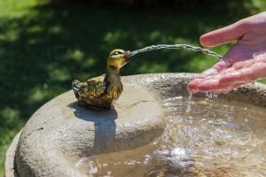 Por qué es importante hidratarse en verano con calor