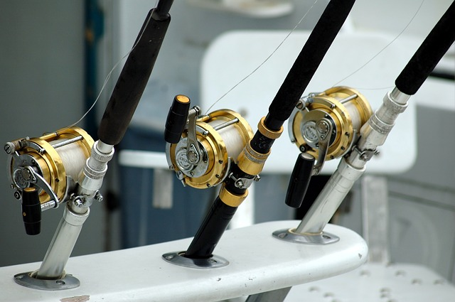 como-disfrutar-de-un-dia-de-pesca-divertido