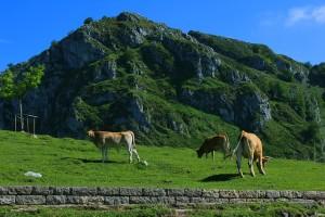 rutas-extraordinarias-en-bici-por-asturias