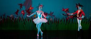 Cómo aprender Ballet en España