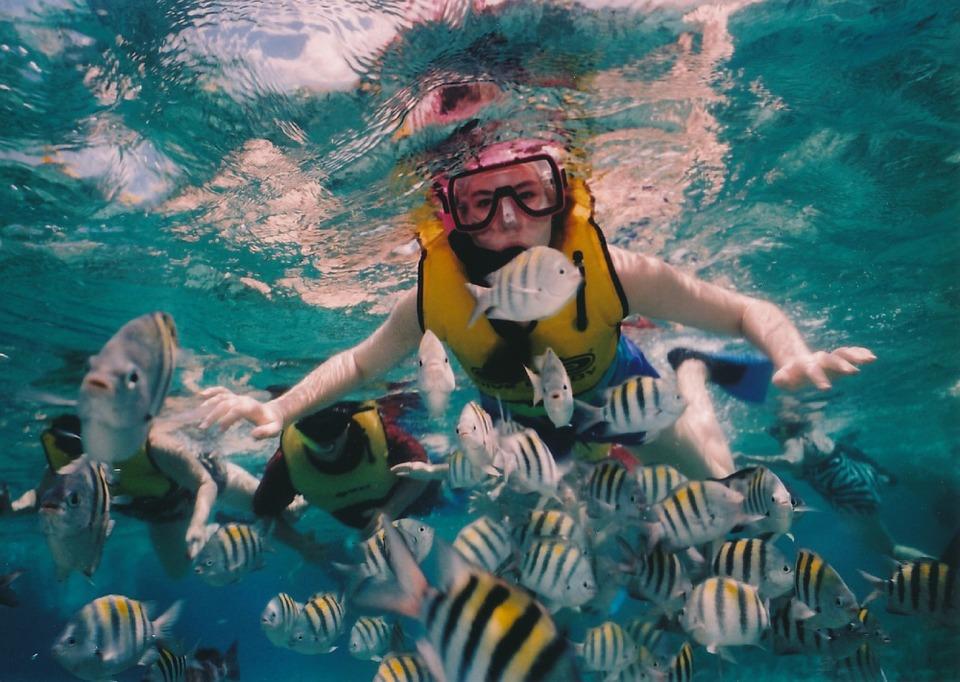 4 Deportes ideales para niños en verano-buceo